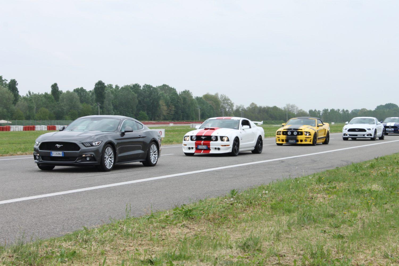 Ford scatena in pista le sportive di razza