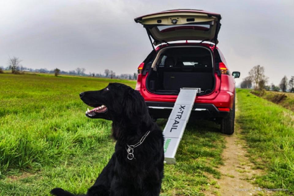 Nissan X-Trail Trainer, l'auto ideata anche per i nostri amici a quattro zampe