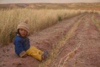 Overland Bolivia e Perù
