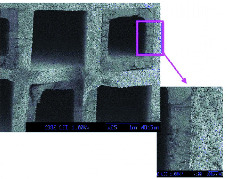 L'analisi al microscopio mostra come lo strato di cenere che si deposita nel filtro raggiunga spessori paragonabili a quelli delle pareti dei canali, generando una notevole riduzione della sezione di passaggio dei gas.