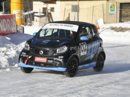 Le racecar coinvolte nel trofeo smart EQ fortwo e-cup